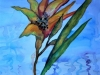 Kartanon lilja (Kikka Kainulehto)